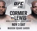 Šouka UFC 230