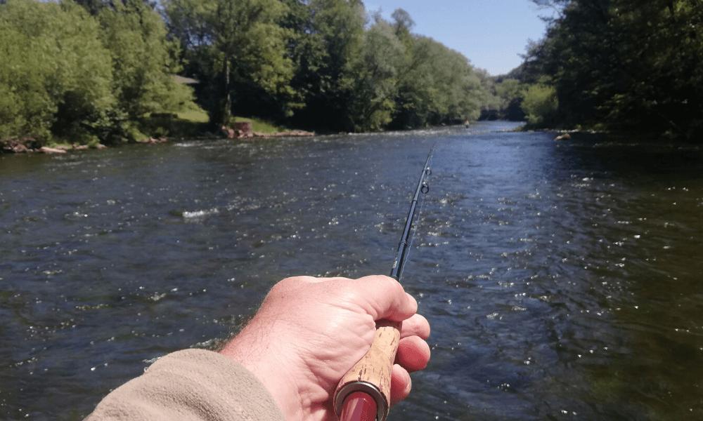 A rieka tečie 2020